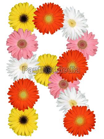 letter r alphabet of flowers cut