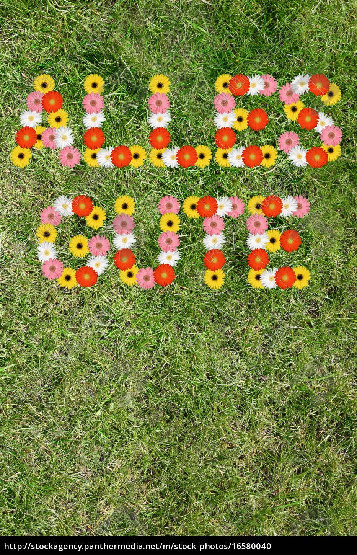 Alles Gute Karte Wunschen Geburtstag Aus Blumen Blume Lizenzfreies