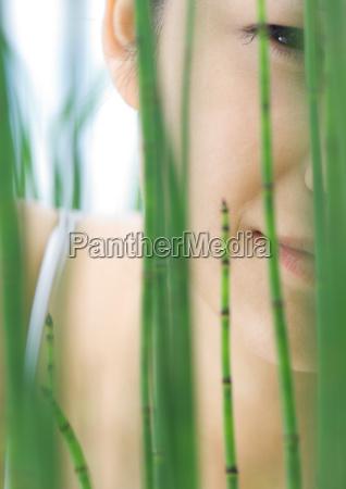 womans face seen through reeds