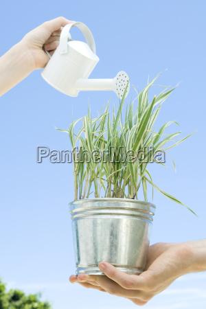 hand haende person palmen outdoor freiluft