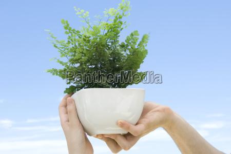 hand haende person outdoor freiluft freiluftaktivitaet