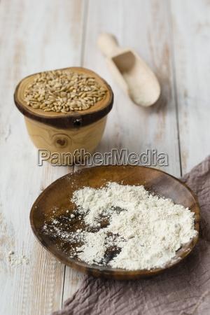 bowl of einkorn wheat triticum monococcum