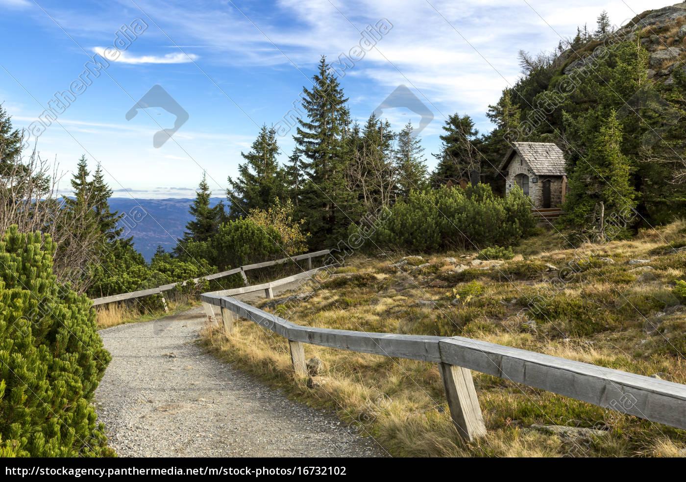 germany, , bavaria, , bavarian, forest, national, park, - 16732102