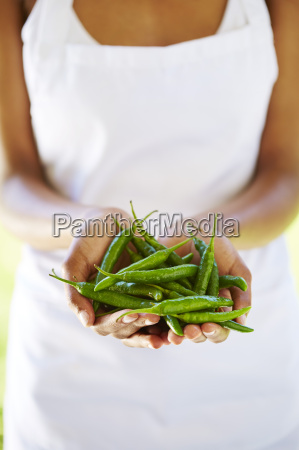 womans hands holding green chili peppers