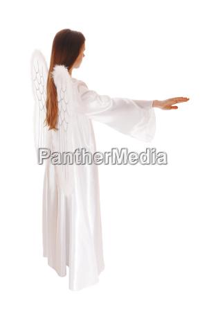 religion freisteller symbolisch tragflaeche fluegel engel