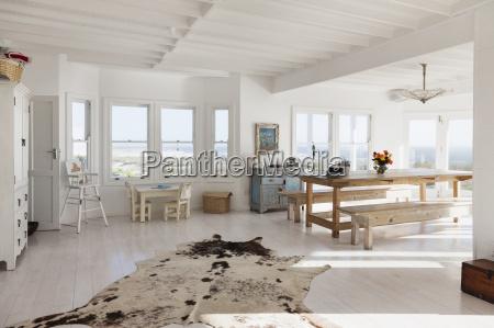 animal skin rug in sunny dining