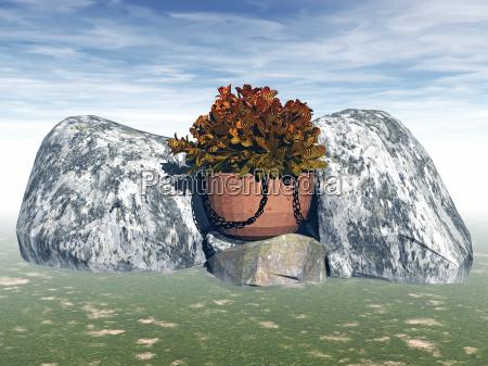 steingarten mit pflanzschale