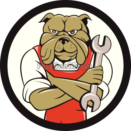 bulldogmechaniker arme gekreuzt spanner kreis cartoon
