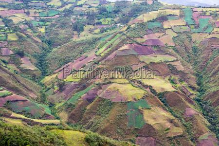 farmland landscape in peru