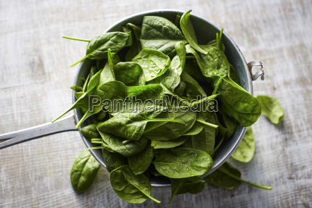 fresh spinach leaves in colander on