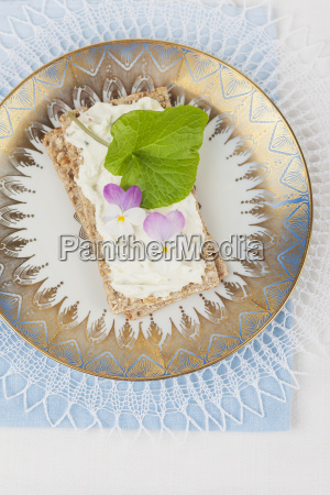 cream cheese with violet and wasabi