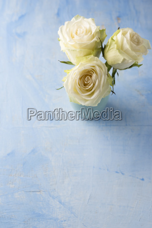 three white roses in a flower