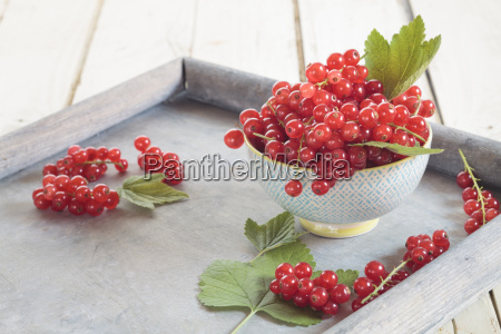 bowl of red currants with leaves