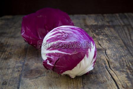 blatt baumblatt holz frische lila fotografie