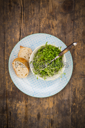 garden cress in bowl on plate