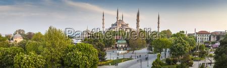fahrt reisen religion baum tourismus museum
