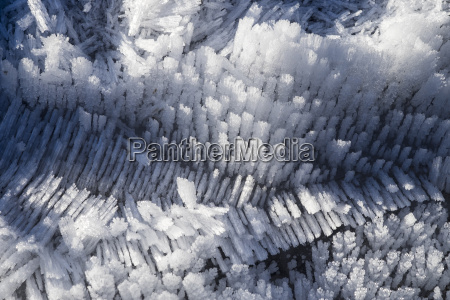 ice crystals close up