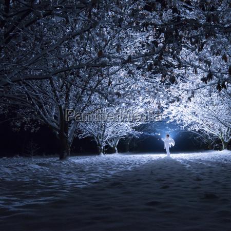 baum winter nacht nachtzeit dunkelheit engel