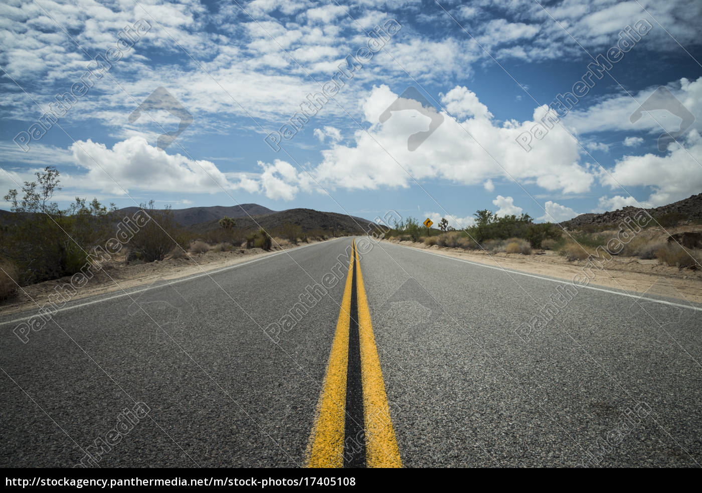 usa, , california, , road, in, joshua, tree - 17405108