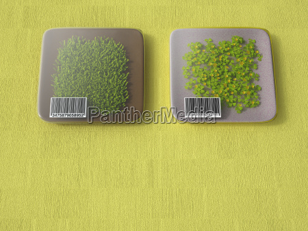 3d rendering packadged grass with bar