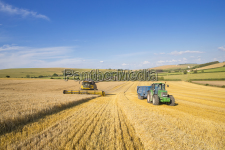 combine harvester with tractor and trailer