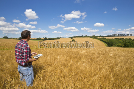 farmer using digital tablet in sunny