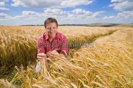 portrait confident farmer examining sunny rural