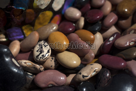 multicolored kidney beans in tepetlixpa seed