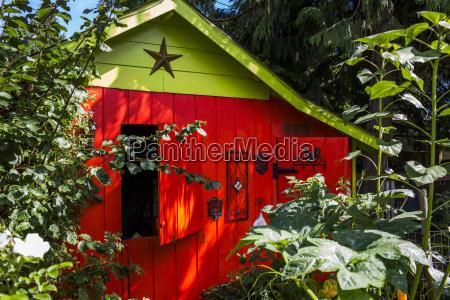 blatt baumblatt farbe baum horizontal outdoor