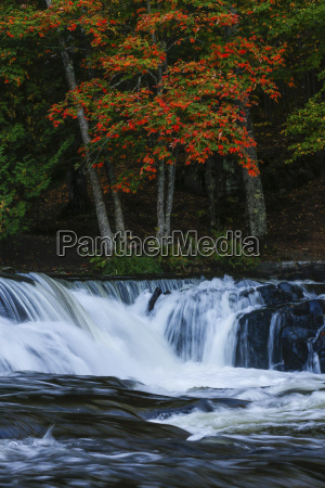 fall leaves along the water in