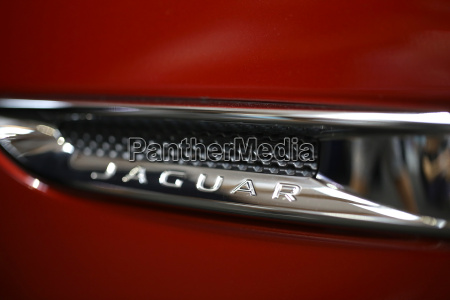 metallische logonahaufnahme jaguars auf dem jaguar