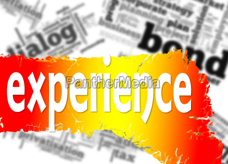 word cloud with experience word