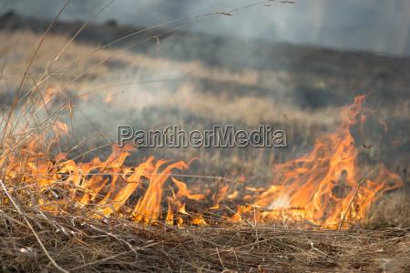 burns dry grass fire