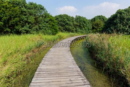 hong kong wetland park holz wegmethode