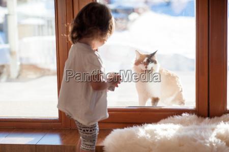 beste freunde katze und kleines maedchen