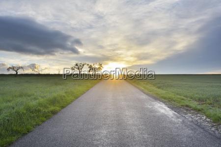 rural road at sunrise schippach miltenberg