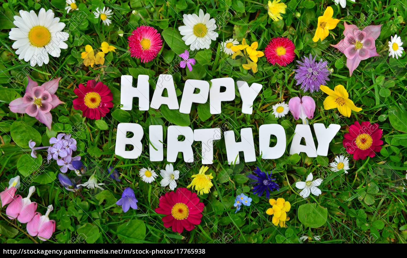 Happy Birthday Text Auf Bunter Blumen Wiese