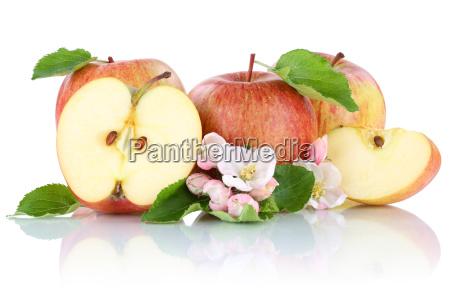 apfel AEpfel frucht fruechte obst geschnitten