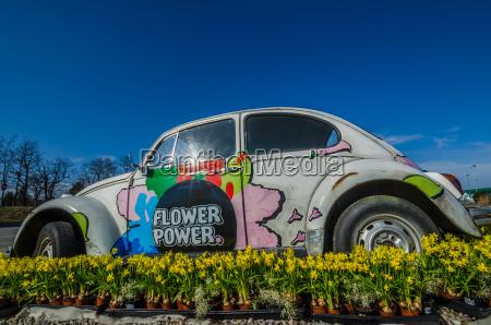 flower power auto