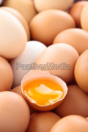 fresh eggs background