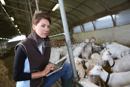 farmer woman using digital tablet in