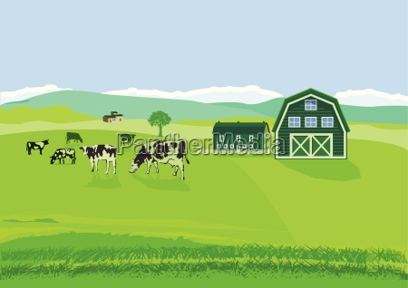 cows in the pasture with farm