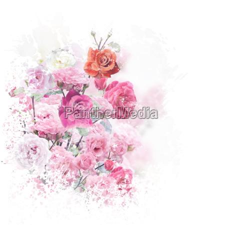 rose blueht aquarell