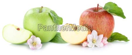apple fruit apples fresh fruit free