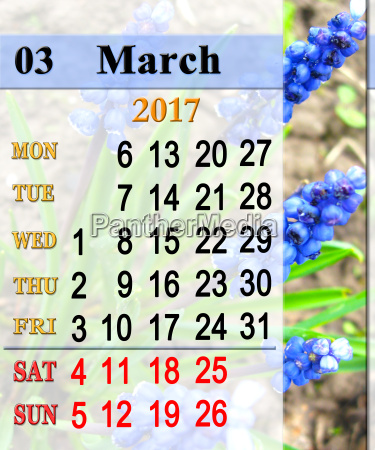 kalender fuer maerz 2017 muscari