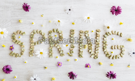 the word spring shaped with dried