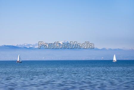 germany lake constance sailing boats mountains