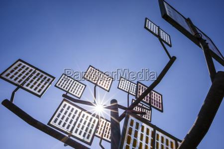 kunst baum sonnenlicht outdoor freiluft freiluftaktivitaet