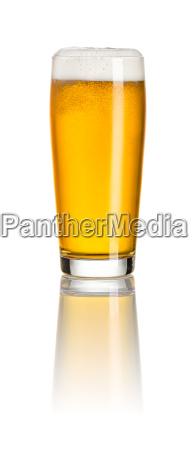 light beer in a mug willi