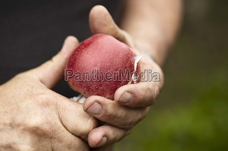 a man cutting an apple with
